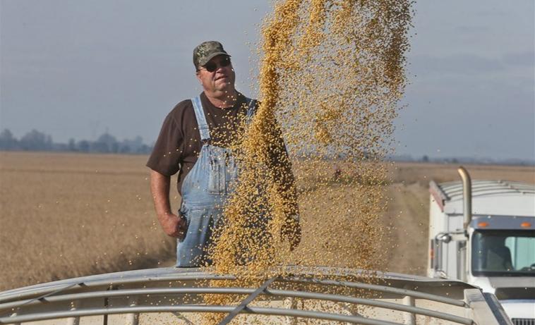 猛买美国大豆和液化气? 欧盟:主要还是看市场