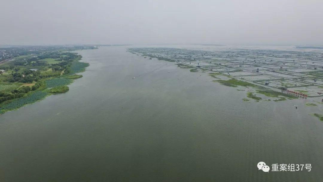 图为阳澄湖,湖中央是养殖大闸蟹区域.新京报记者半年/摄