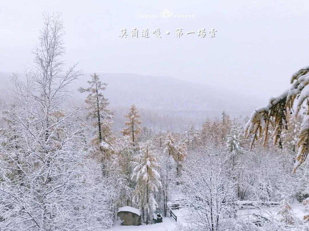 莫尔道嘎国家森林公园 有着大片的林海 如果你去的时候正好赶上下雪