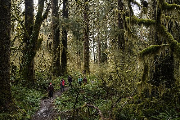 爱彼迎多天探险领会:步行在世界上最无声的当地