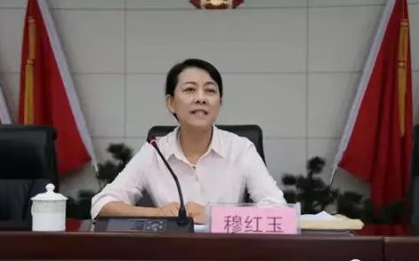 媒体:中纪委反腐能手空降地方后谁来补缺?