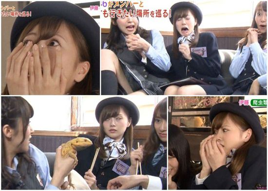 日本综艺节目美女被吓