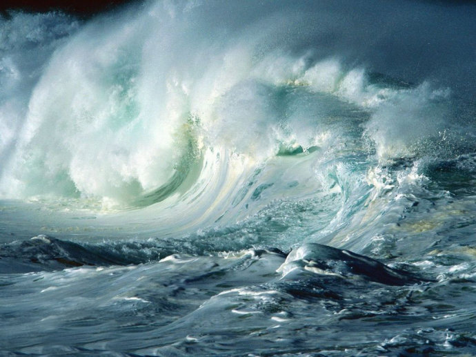地球16大惊人事实:人类曾仅剩2000人(图) - 雷石梦 - 雷石梦
