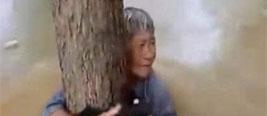 老太洪水中获救 老伴将其捆树上自己被冲走