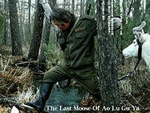 最后的鄂温克族猎人:禁猎后生活陷入困境