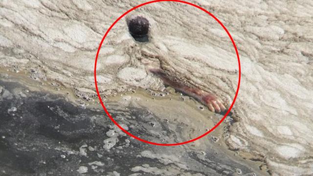 巴西奥运会场地出现浮尸
