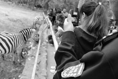 北京动物园给游客开罚单