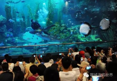 聊城海底世界征集景区形象广告语_青岛频道_凤凰网