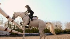 爱上一匹野马,她用11年时间只做了一件事......