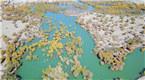 航拍新疆塔里木河生态输水 场面壮观