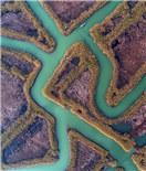 """冬日洪泽湖湿地 尽显""""风情万种""""迷人景象"""