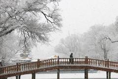 春雪润山庄