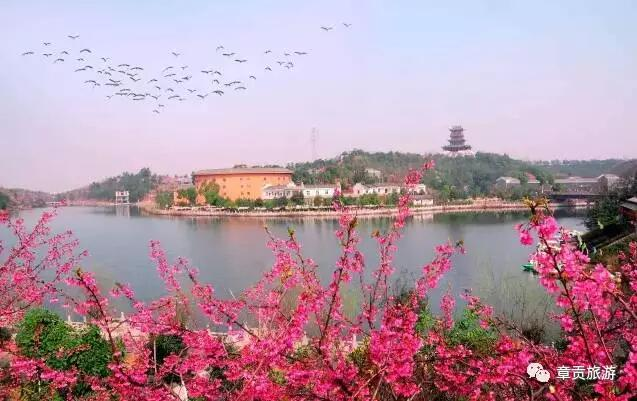 赣州森林动物园位于沙河大道