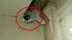 男子在酒店客房凿了个洞 隔壁夫妻隐私全被拍