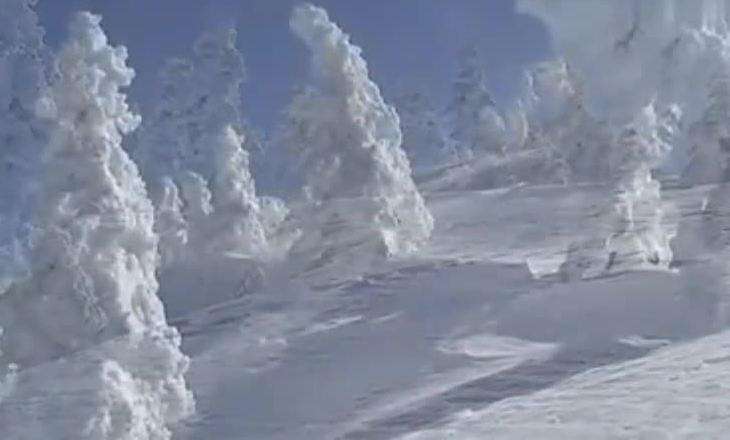 日本雪景!