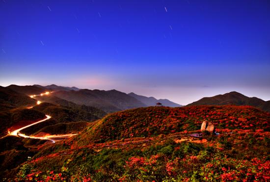 4月20日起 浏阳大围山可赏万亩杜鹃花海