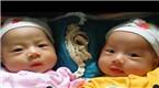 浙江:一对双胞胎却有两个爹 背后原因太荒唐