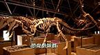 ABC KIDS《童趣大冒险》触碰侏罗纪元的回忆
