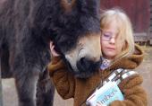 失声女孩与治愈小毛驴的对话