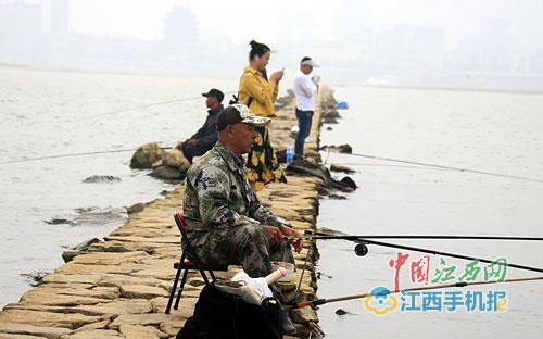 赣江江心洲石坝显现 市民漫步、垂钓 生活真自在