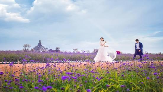 江苏首批旅游风情小镇创建单位:盐城荷兰花海风情小镇