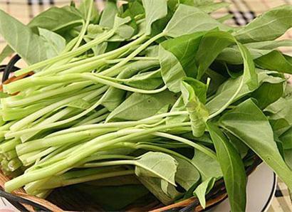市场上最惹人眼球的蔬菜莫过于空心菜了,空心菜,原名蕹菜,又名藤藤菜