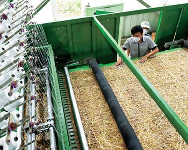 明升肥东:巧用秸秆织草毯 年消耗秸秆20万吨