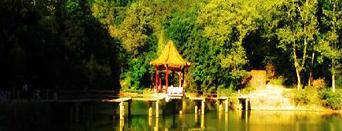 龙泉森林公园