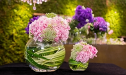 用一束粉红色的花 许你一段圆满的爱