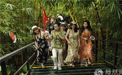 养眼!美女组团游呀诺达雨林
