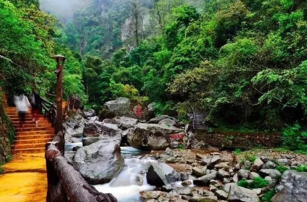 谷内满山翠绿,在珠帘瀑布,黑龙潭,桃花溪等景点,或戏水游玩,或林中