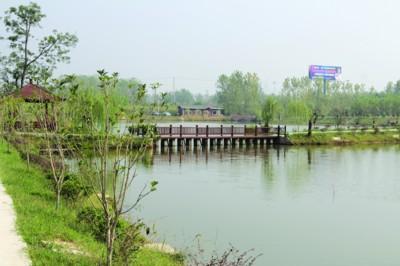 池州:净化道路周边环境 助推美好乡村建设