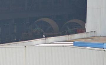 第5艘国产野牛曝光 据说可直航钓鱼岛登陆台湾
