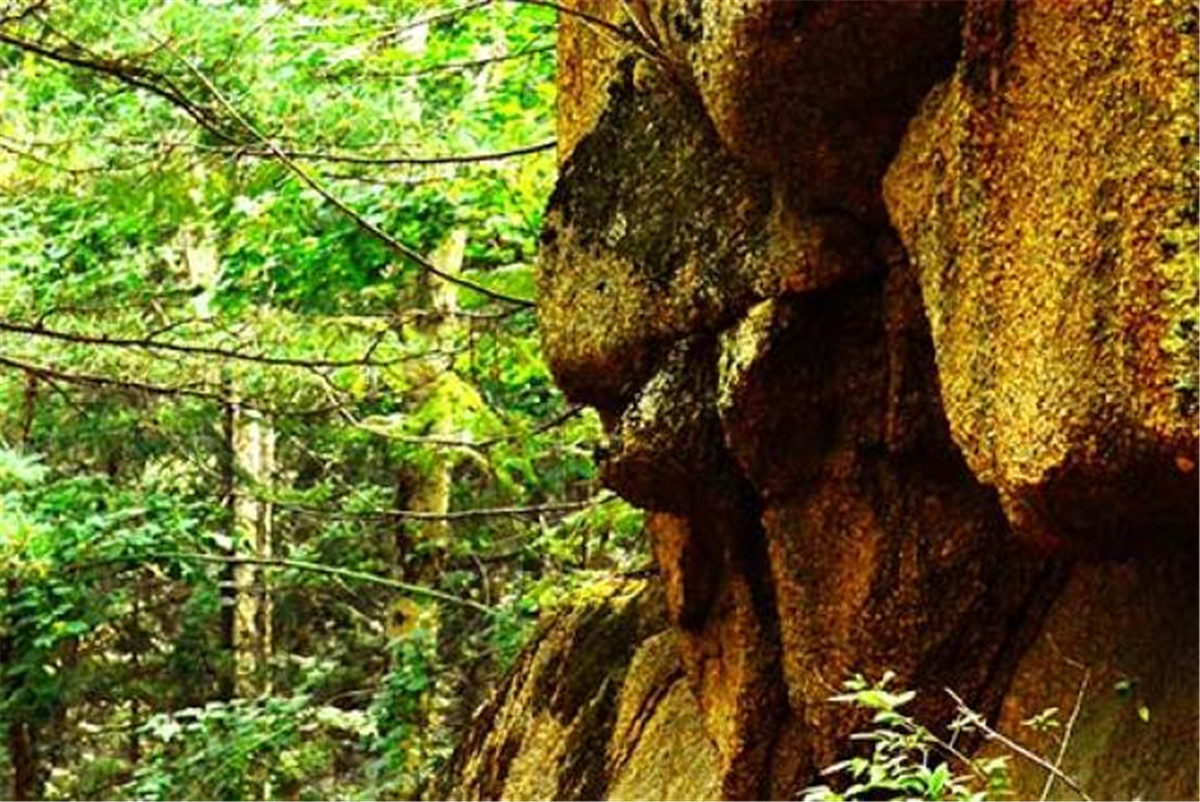 朗乡石林:原始森林中的将军岭