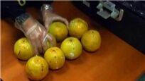 """大爷箱子里""""黄色橙子"""" 其实大有乾坤"""