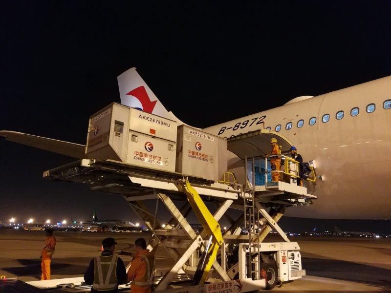 两架政府包机飞越19国 赴海外接回飓风受困同胞