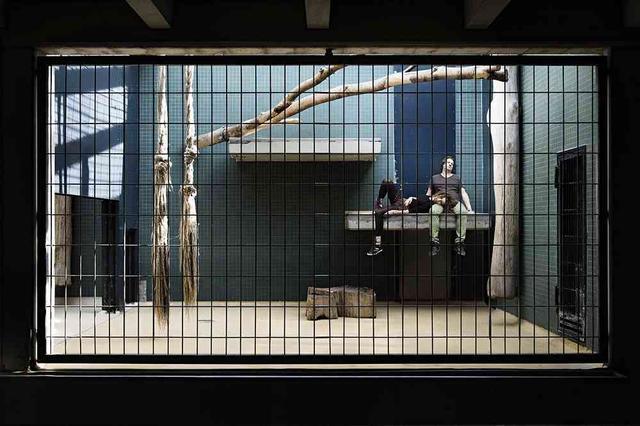动物园把人关到笼子里,当成动物供观赏,每关一年得300万奖金