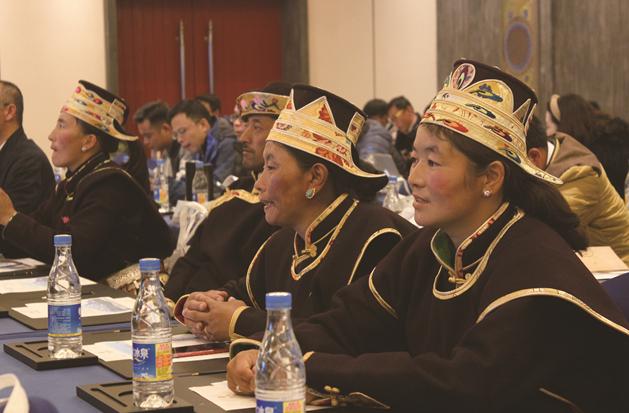 燃情西藏:鲁朗论坛掀起高原上的一抹红