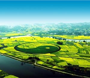 潼南:新型经营主体助推现代农业发展