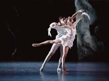 芭蕾舞姬的优雅人生
