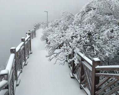 2018年第一场雪来啦!湖南各地唯美雪景出炉