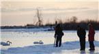 多伦多民众严寒中踏冰赏冬景