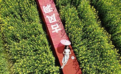 """视觉盛宴!浏阳古风洞上演""""花田旗袍秀"""""""