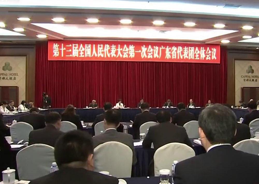 广东代表团审议政府工作报告