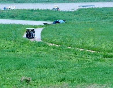 """鄱阳湖畔现最美""""水上公路"""""""