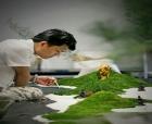传承新古典主义中国菜 | 李双全?#27827;?#23545;的方法用心去做一件事......