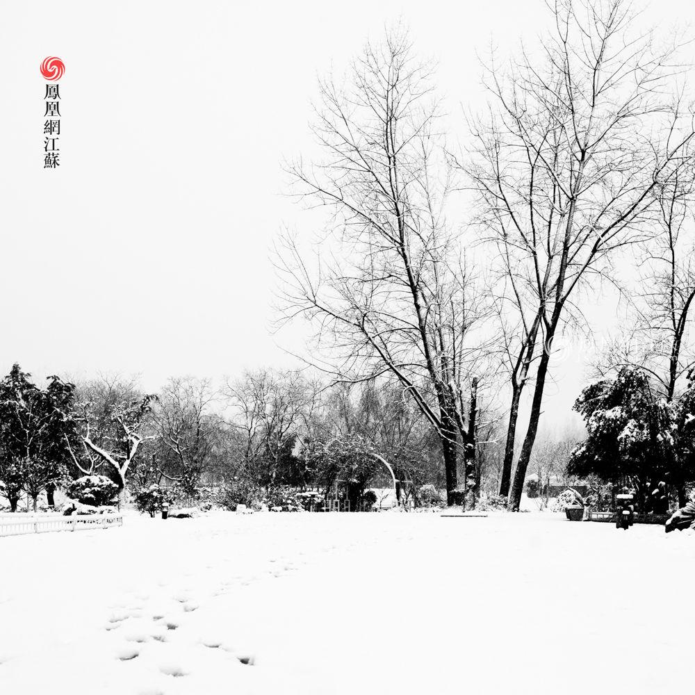 一场雪,赠给南京一组古风国画