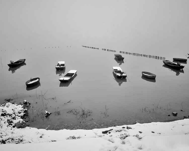 每天一分钟 知晓安徽事|巢湖流域水环境保护区范围划定