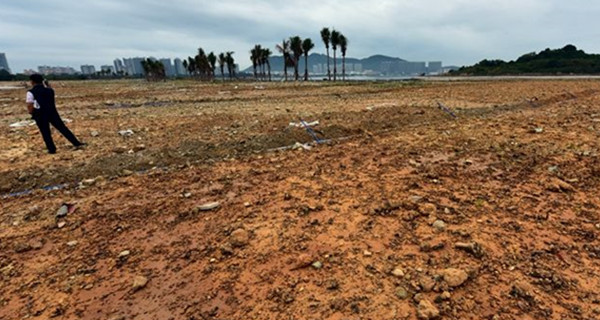 心痛!沿海省份违法围填海 海岸线已被蚕食得千疮百孔