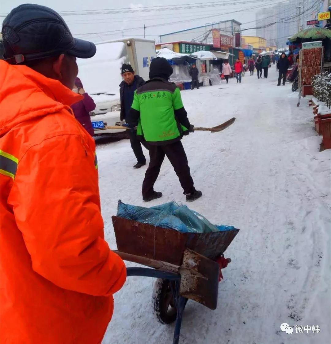 中韩街道:雪景很美,但他们更美_青岛频道_凤凰网